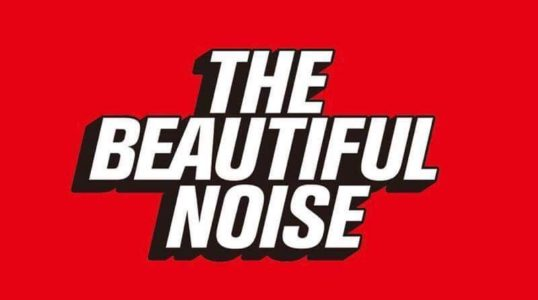 The Beautiful Noise